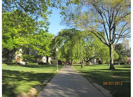 春假走访三所大学之二 乔治城大学 zt - Jennifer - 雨夜相思客